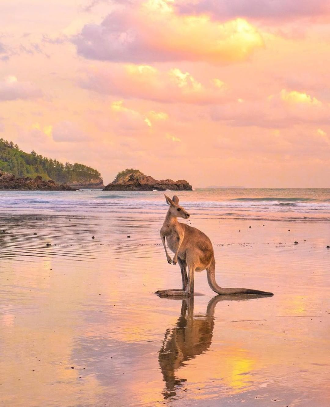 13 Beaches in Queensland You Have To Visit