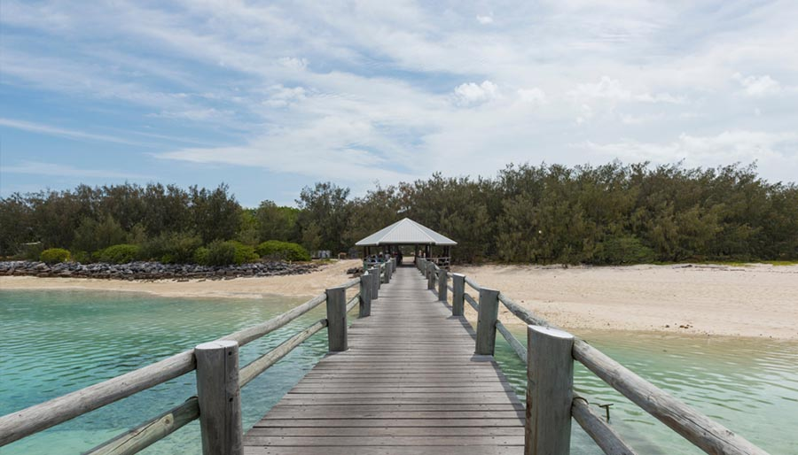 4 Incredible Gladstone Region Experiences To Have On Your Big Lap