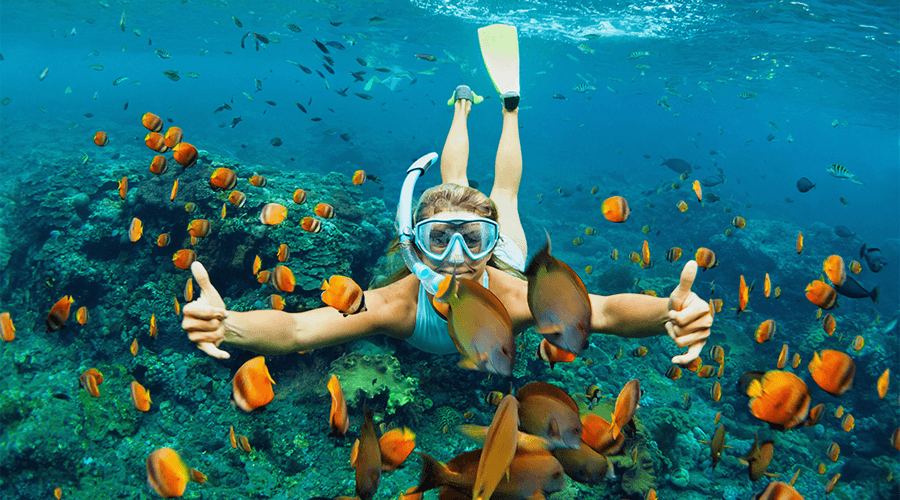 Top 23 Places To Snorkel In New South Wales