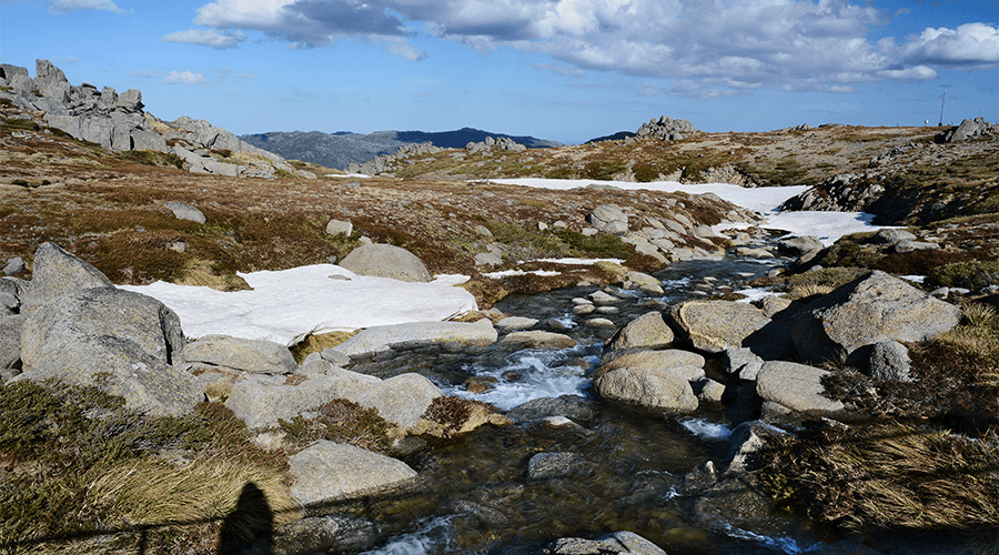 17 Free Camp You Need To Know About In The Snowy Mountains