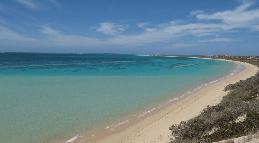 Your Ultimate Guide To Australia's Coral Coast